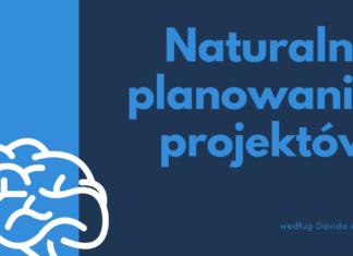 Naturalne planowanie projektów wg Davida Allena